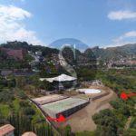 #Taormina. Prime devastazioni del G7: ulivi secolari abbattuti per fare spazio all'eliporto
