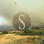 #Economia. La UIL chiede lo stato di calamità naturale per le zone colpite dagli incendi