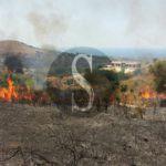 #Cronaca. Incendio a Castroreale, in fiamme diversi ettari di terreno