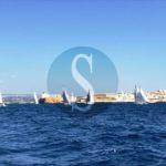 #Sport. Si è conclusa la 57^ edizione della regata Siracusa-Malta