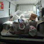 #Cronaca. Pessime condizioni igieniche: sequestro di alimenti a Torrenova