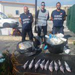 Cronaca. Milazzo, sequestrati quindici chilogrammi di prodotto ittico e nove pescispada sotto misura dalla Guardia Costiera