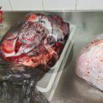Cronaca. Nebrodi, scoperta in un bar carne conservata in sacchetti dell'immondizia