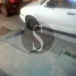 Cronaca. Barcellona, disabile bloccata dalle auto ma la Polizia Municipale non interviene
