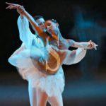 """Danza. Il Balletto di Milano ne """"Il lago dei cigni"""" al teatro Vittorio Emanuele"""