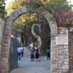 """Ambiente. Taormina, Festa dell'Albero a Le Rocce. Presti: """"Cancellare il degrado con la bellezza"""""""