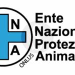 Cronaca. Maltrattamento di animali, 8 denunciati e un furgone sequestrato a Catania