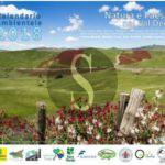 """Ambiente. Al via la settima edizione del calendario """"Natura e paesaggio nel Val Demone"""""""