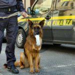 Cronaca. Corriere della droga arrestato a Messina con 3 chili di hashish