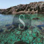 """Ambiente. All'European Dive Show il calendario di eventi dedicati a """"Ustica Villaggio Letterario"""""""
