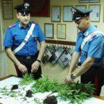 Cronaca. Santa Lucia del Mela, coltivava la marijuana in balcone: arrestato 25enne