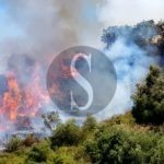 Cronaca. Messina, incendio minaccia abitazioni a Minissale