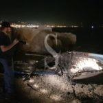 Cronaca. Messina, a fuoco barca sulla spiaggia di Grotte: si sospetta un incendio doloso