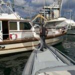 Cronaca. Mancata dichiarazione dei redditi per il diporto nautico, multe salatissime a Palermo