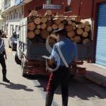 Cronaca. Furto di legname nel Parco dei Nebrodi, arrestato 25enne dai Carabinieri