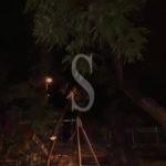 Cronaca. Maltempo flagella Barcellona PG: il vento abbatte albero in piazza Libertà