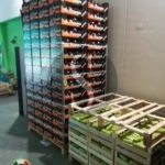 Messina, sequestrati oltre 3.000 kg di frutta e verdura a Contesse