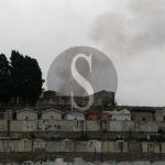 Emergenza pulci al cimitero di Barcellona PG, il comune avvia la disinfestazione