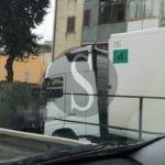Cronaca. Messina Centro, crolla albero sulla strada: tragedia sfiorata