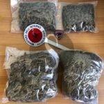 Servizio antidroga a Messina, sequestro di marijuana e denuncia a carico di ignoti