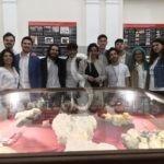 Notte europea dei Musei, oltre 4.000 visitatori alle due mostre dell'Università di Catania