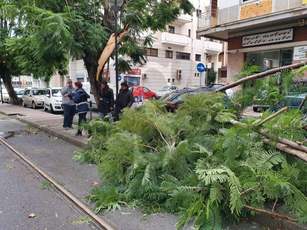 Maltempo a Messina: alberi crollano su auto in centro