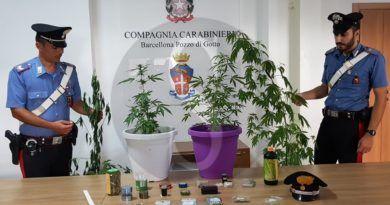 Spaccio di droga a Barcellona PG, coltivava cannabis sul balcone: arrestato 57enne