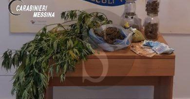 Terme Vigliatore, piante di droga in casa, serra per essiccarle e dosi di marijuana: arrestato 32enne